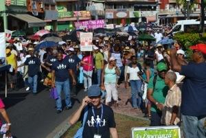 Martinique : 2000 manifestants contre le mariage pour tous...200 contre l'épandage aérien des pesticides