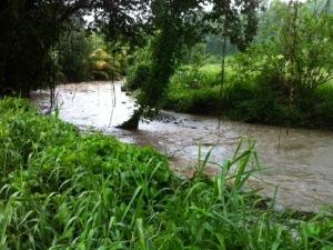MÉTÉO : La #Martinique en vigilance Orange, la Guadeloupe en Jaune