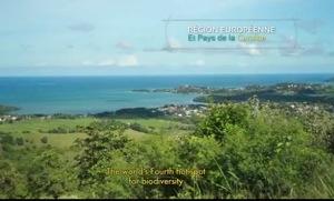 Même en #Martinique...un oignon ne sera jamais un PAYS