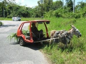 T'inquiète ...la #Martinique avance