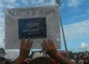Quand les Municipales de 2014 s'invitent au #carnaval en #Martinique