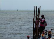 Yole ronde de Martinique : Prix du Rocher