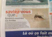 #Tourisme en #Martinique et en #Guadeloupe... Il va falloir sortir les rames