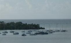 La Guadeloupe ? Le pire souvenir de vacances de Mathieu Bastareaud