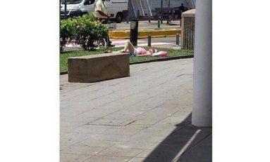Quand une femme sous ses airs de touriste prend ses aises à l'aéroport Aimé #Césaire en #Martinique