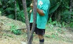 Un serpent de près de 3 m capturé au Lorrain en #Martinique