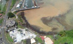Point de situation sur les #sargasses en #Martinique : Nouvelle reconnaissance aérienne