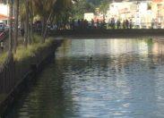 #Martinique : il tente d'échapper à la police en plongeant dans le canal Levassor