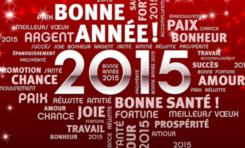 Avec un peu de retard...Bonne année 2015