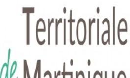 Daniel Marie-Sainte fait un point sur la mise en place de la Collectivité Territoriale de Martinique