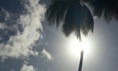 L'image du jour [10/01/16] Martinique