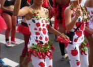 Mardi gras ...Bondamanjak Day à Fort-de-France en Martinique