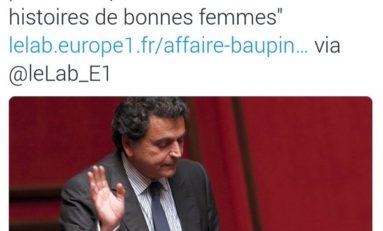 """Baupin ? """"Une histoire de bonne femme"""" (un député français)"""