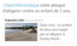 Le tweet du jour  [15/06/16] Alligator Daech Le Letchi