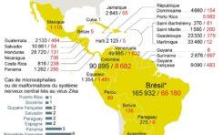Zika : la Martinique championne du monde de la non-confirmation.