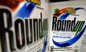 Baygon rachète le RoundUp, bon appétit. (+ vidéo)