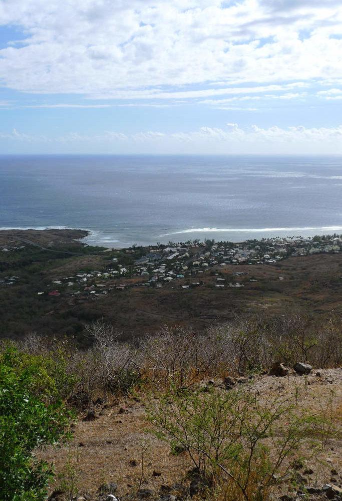 La savane de la Saline-les-Bains – Journées Européennes du Patrimoine à la Réunion