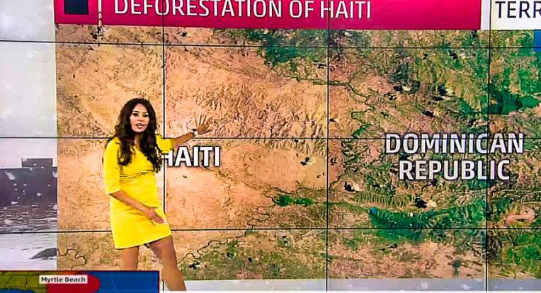 «En Haïti même les enfants ont mangé les arbres» (pétition)