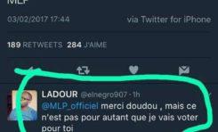 Le tweet de l'année 2017 - Marine Le Pen
