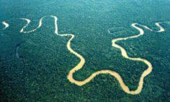 La phrase du jour 13/04/17 - Dédiée au peuple de Guyane