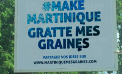 #MAKE MARTINIQUE AND GUADELOUPE GRATTENT MES GRAINES