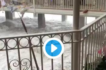 Quand Irma pose ses valises à l'Hôtel Beach Plaza à Saint Martin...