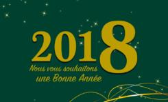La compagnie minière Montagne d'Or souhaite à la Guyane une bonne année 2018