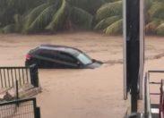 La Martinique teste la première Audi autonome