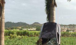 L'image du jour 17/04/18 - Martinique