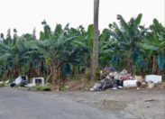 Les pollueurs sont des ordures - Martinique - Sainte-Marie - Musée de la Banane-