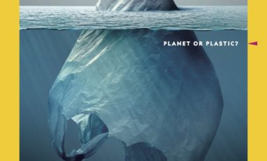Plastic Planet (photos)