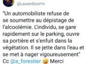 Le tweet de l'année 2018 - Île de La Réunion
