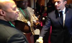 Sommet de l'Union Africaine : lancement de l'Etat de la Diaspora Africaine