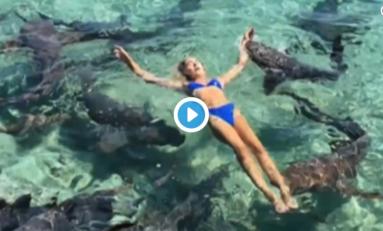 """Une """"modèle"""" Instagram mordue par un requin (news inutile du jour en vidéo)"""