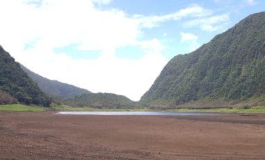 Images de l'île de La Réunion - Le Grand Étang - (photos/vidéos)