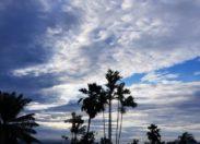 L'image du jour 14/10/18 - Martinique