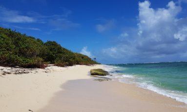 Images de la Martinique - Plage de Cap Macré au Marin (Photos et Vidéos)