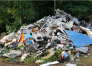 Les pollueurs sont des ordures - Morne Pavillon - Lamentin - Martinique