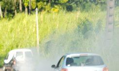 Les pollueurs sont des ordures - Martinique