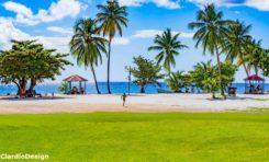 L'image du jour 03/02/19 - Anse figuier - Martinique