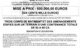 Martinique : La villa l'Oasis est à vendre...ouhhh Michael let it be...