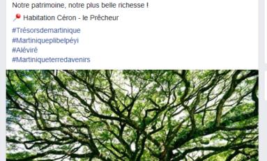 Martinique : eh oui...Catherine Conconne ne sera JAMAIS agrégée d'histoire...