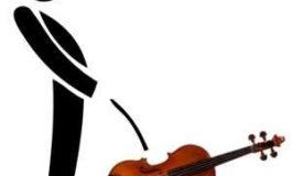 """Incivisme en Martinique : le préfet """"pistil"""" dans un violon ?"""