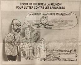 Selon le Canard Enchaîné il y a des algues sargasses à l'île de La Réunion 😳😳 😜😜😜🤣🤣😁😁
