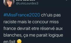 Clémence Botino est la  Miss France 2020...et pendant ce temps-là en France ça tweete ça...