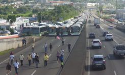 L'image du jour 18/12/19 - Martinique - Opération molokoy