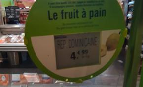 La République Dominicaine exporte des fruits à pain en France...en Martinique les politiques se grattent les graines
