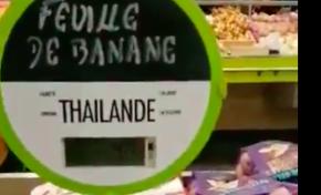 Des feuilles de bananier de Thaïlande vendues en...Guadeloupe