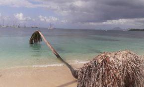 L'image du jour 01/01/20 - Pointe du Marin - Martinique