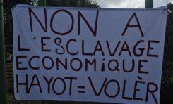 L'image du jour 01/02/20 - île de La Réunion - Hayot